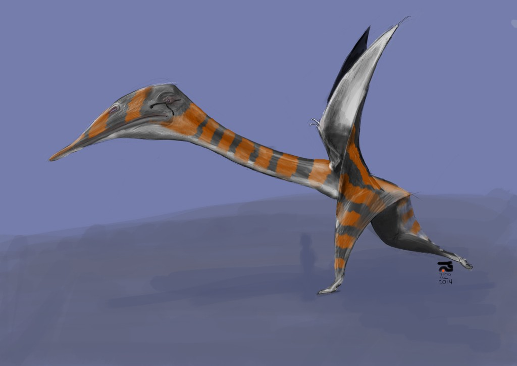 Quetzalcoatlus-Left-Side